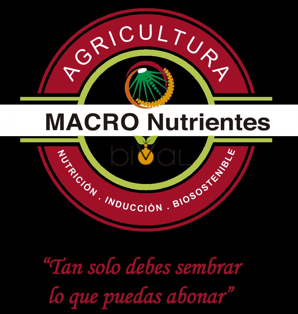 refran macronutrientes 972x1024 - Macro Nutrientes