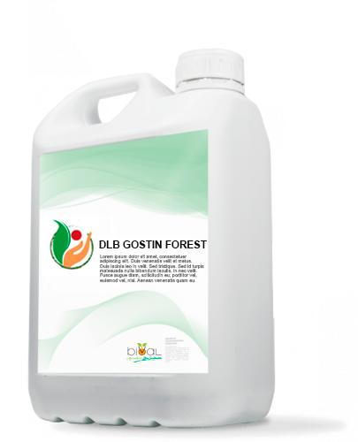 45.DLB GOSTIN FOREST - DLB GOSTIN FOREST