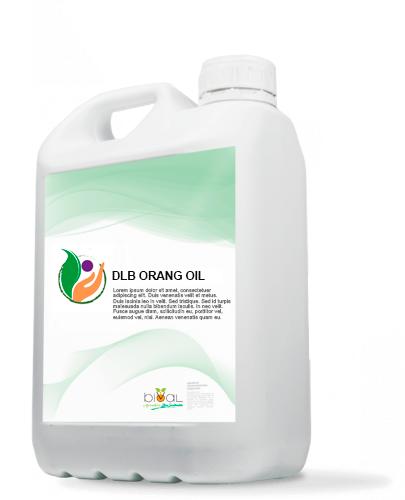93.DLB ORANG OIL - DLB ORANG OIL
