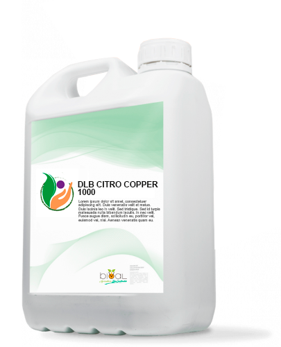 94.DLB CITRO COPPER 1000 - DLB CITRO COPPER 1000