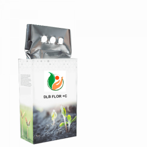 12 DLB FLOR C 300x300 - Bioestimulantes
